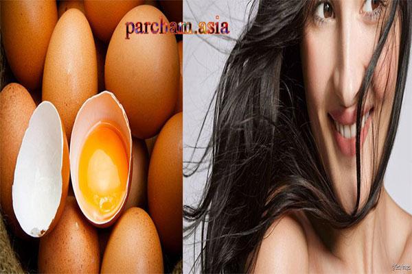 تخم مرغ و چربی مو